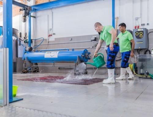 Teppichreinigung mit Regenwasser