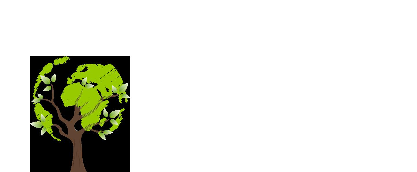 Teppichreinigung München grüner baum